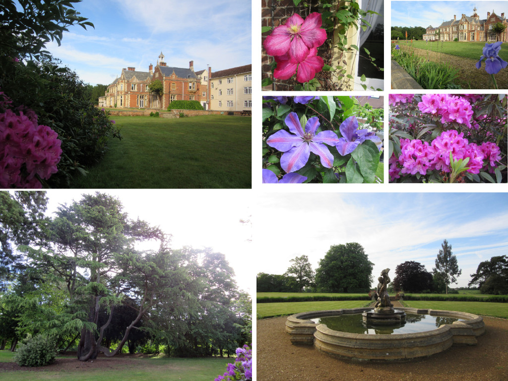 Collage-High Leigh Gardens